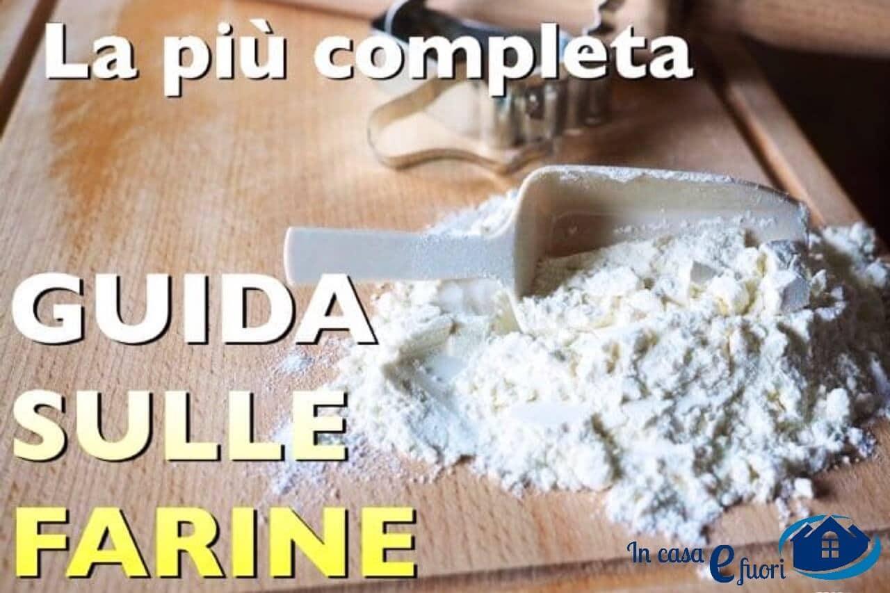 Guida Sulle Farine: Forza E Proteine, Come Utilizzarle Al Meglio Nelle Ricette