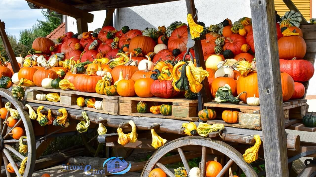 Frutta E Verdura Di Novembre | Ricette E Consigli Per Non Sbagliare
